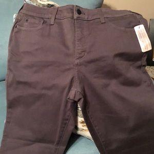 NYDJ leggings size 14P. Brand New